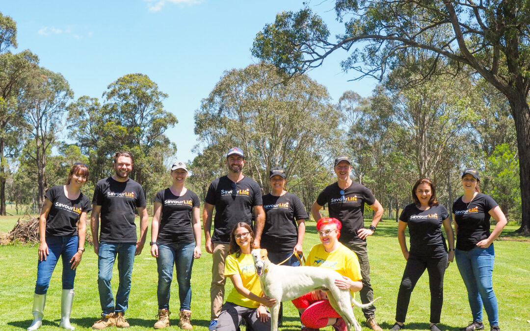 6 reasons why your team needs a Corporate Volunteering Experience