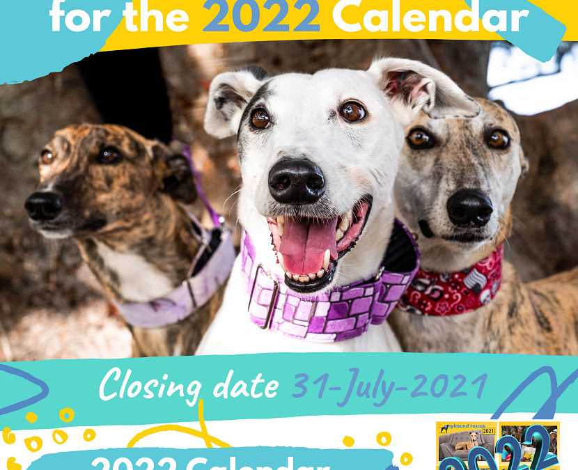 Attention Fashounds! 2022 Greyhound Rescue calendar submissions now open