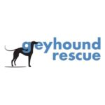 Greyhound Rescue 🐾